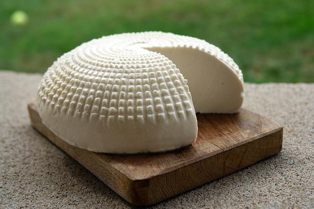 גבינות תוצרת בית