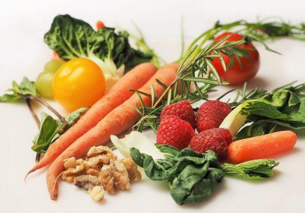 מהגישה ועד לביצוע: המדריך המלא לבחירת דיאטה